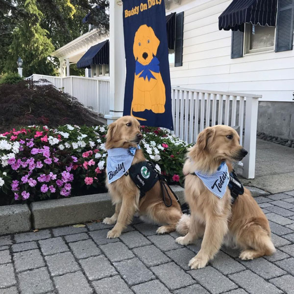 Buddy and Teddy at the Funeral Home